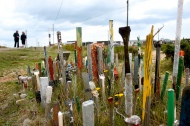 Dungeness paintbrush garden